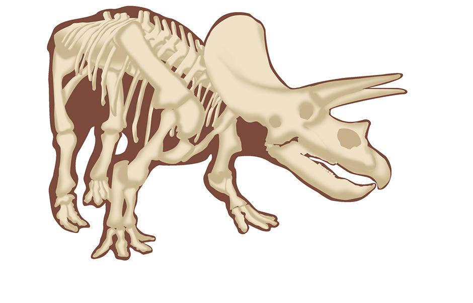 Dino Skeleton PDF