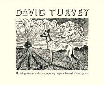 Turvey-iD-v2